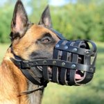 Soft & Light Leather Basket Dog Muzzle for Belgian Malinois