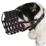 Sarmatian Mastiff Muzzle Made of Leather | Soft Dog Muzzles UK