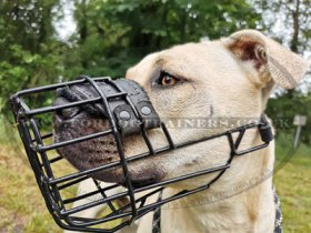 Universal Dog Muzzle for Pitbull with Rubber Covering