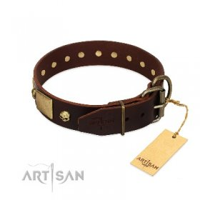 """Heavy Metal"" Dark Brown Leather Dog Collar With Glossy Studs FDT Artisan"