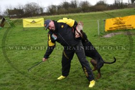 Schutzhund Scratch Pants and Vest | Dog Training Scratch Suit