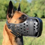 Leather Dog Muzzle for Malinois | Strong K9 Dogs Muzzle