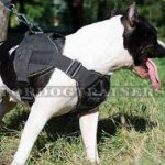 NEW Staffordshire Bull Terrier Harness Nylon with Handle