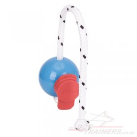 New Magnetic Dog Ball & a MAXI Power-Clip Top-Matic Super Set