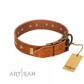 """Woofy Dawn"" Extravagant Light Tan Leather Dog Collar With Brass Studs FDT Artisan"
