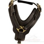 Large Leather Dog Harness UK Bestseller, Soft Padded