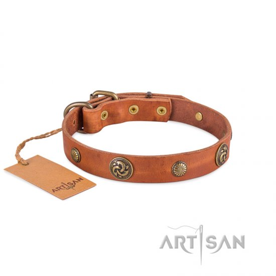 Light Tan Leather Dog Collar by FDT Artisan