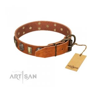 """Strike of Rock"" Tan Leather Dog Collar with Skulls & Plates"