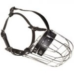 Choose Medium Sized Dog Muzzle for Middle Dog Breeds