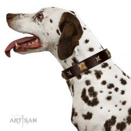 """Choco Dreams"" Dark Brown Leather Dog Collar with Brass Studs FDT Artisan"