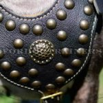 Soft Dog Harness with Brass Studs Royal Design
