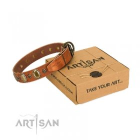 """Total Grace"" Natural Leather Dog Collar With Ovals And Studs FDT Artisan"