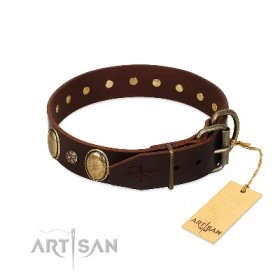 """Bronze Idol"" Durable Chocolate Brown Leather Dog Collar FDT Artisan"