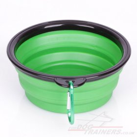 Portable Dog Bowl for Water and Food