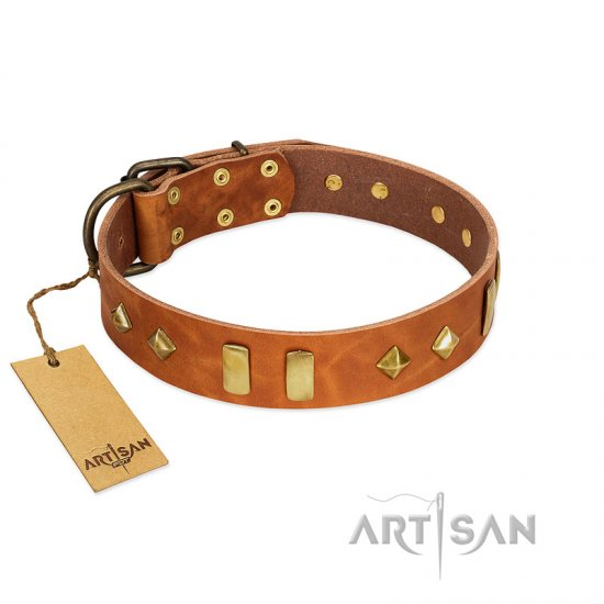 Tan Leather Dog Collar with Studs