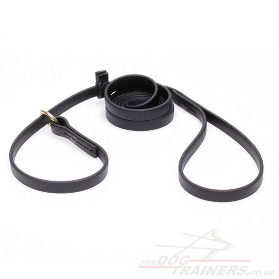Black Biothane Dog Leash and Collar Combined Set for Medium and Large Dogs