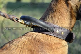 K9 Belgian Malinois Training Collar with Handle 2 Ply Leather
