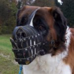 Soft Leather Dog Muzzle for St Bernard Dog Breed