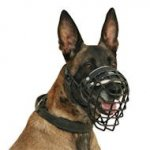 Malinois Dog Muzzle Basket Covered with Black Ruber