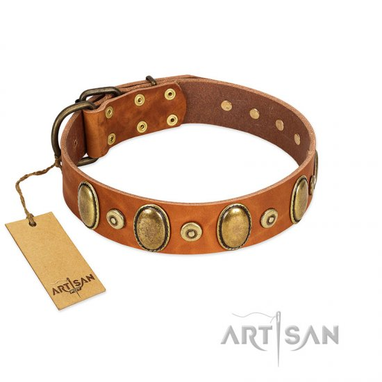Tan Dog Collar with Studs