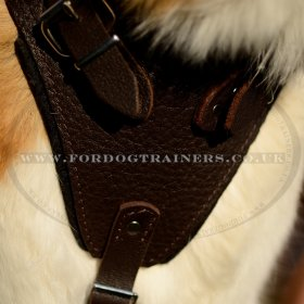 Extra Large Strong Dog Harness for Big Dogs K9 Brown Leather