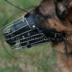 Fully Padded Wire Basket Dog Muzzle for German Shepherd