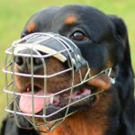 Rottweiler Muzzles UK | Wire Dog Muzzle Perfect for Large Dogs