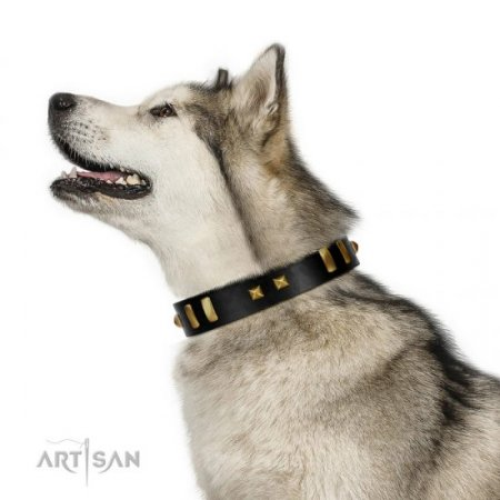 """Fit For Royalty"" Charming Black Real Leather Dog Collar With Brass Adornment FDT Artisan"