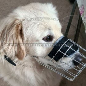 Breathable Dog Muzzle for Golden Retriever That Allows Drinking