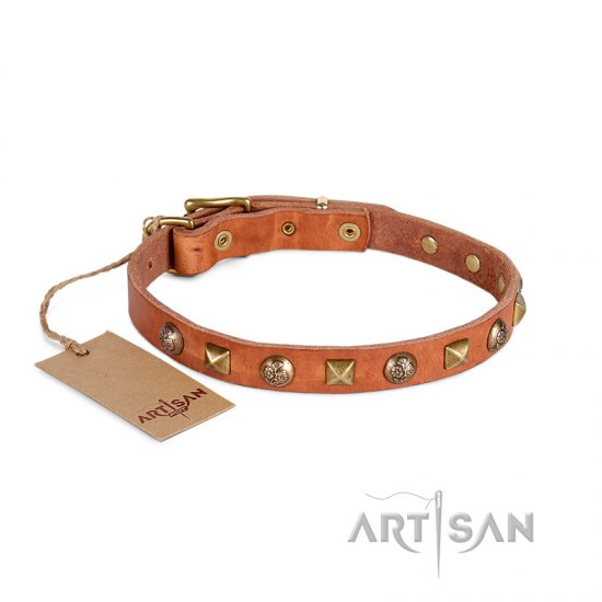 Vintage Tan Leather Brass Studded Dog Collar For Reliable Dog Control FDT Artisan