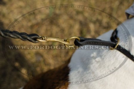 """Simple Honesty"" Leather Choke Collar For Bulldogs For Obedience Training"