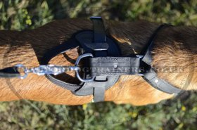 Protection/Attack Leather Dog Harness for Belgian Malinois