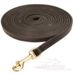 Long Dog Lead for Dog Training 10mm | Best Large Dog Products