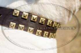 """Gift From Egypt"" Fascinating Leather Dog Collar For American Bulldog"