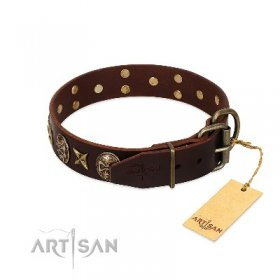 "Fashionable Brown Leather Dog Collar ""Captain Hook"" FDT Artisan"
