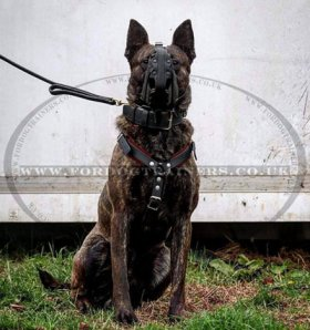Police K9 Muzzle for Dogs Agitation Training