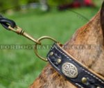 Handmade Leather Dog Collar for Boxer | Luxury Dog Collars UK