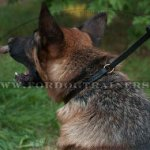 Comfy and Efficient Dog Collar and Leash Set for German Shepherd