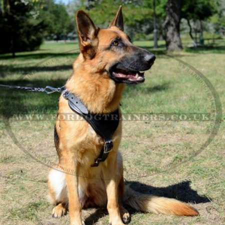 Best German Shepherd Dog Harness with V-Chest - £78.59