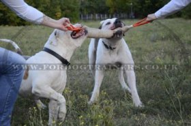 Jute Tugs for Large Dog Training | Bite Tug for Dog