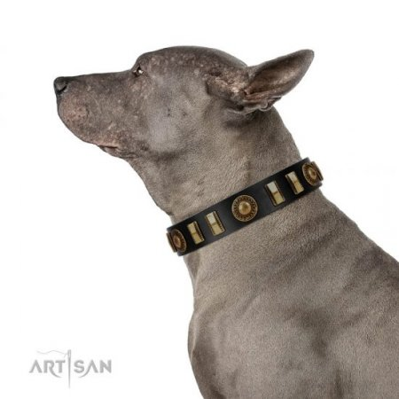 """Lion's Pride"" Durable Black Real Leather Dog Collar FDT Artisan"
