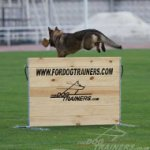 Schutzhund Dog Training Jump | Best Dog Jump for Agility