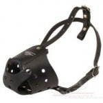 Black Leather Dog Muzzle for Everyday Use