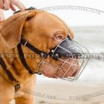 Wire Dog Muzzle for Dogue De Bordeaux | New Muzzles for Dogs UK