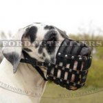 Great Dane Muzzle UK Best for Large Dogs | Soft Dog Muzzle