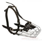 Choose The Best Large Dog Muzzle Basket with Padded Cage