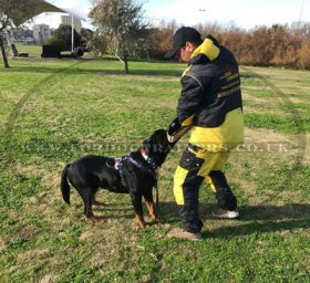 NEW! Police Dog Training Suit for Sale from the Producer