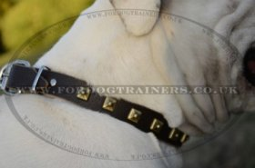 """Treasures Of Pyramids"" Studded Leather Dog Collar For American Bulldog"