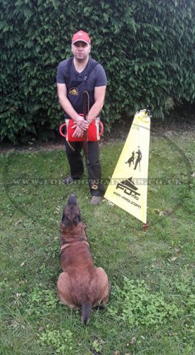 IGP Dog Training Blind Mini-Size