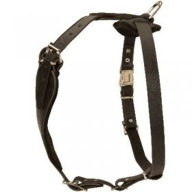 High-Quality Comfortable Leather Dog Harness For Husky